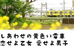 幸せの黄色い電車 恋せよ乙女 愛せよ男子