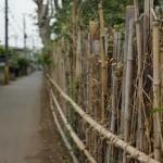 おばあちゃんの散歩道にある、竹垣。