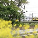 西武国分寺線の黄色い電車。