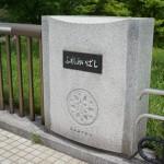 武蔵国分寺公園の真ん中を横切るふれあい橋。