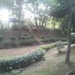 緑溢れる憩いの場、国分寺けやき公園