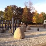 武蔵国分寺公園にも秋が到来