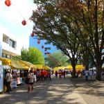 葵祭でツナガル