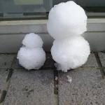 雪から生まれた親子 ここにあり。