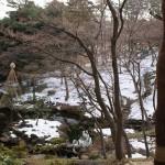 弥生迎えし、殿ヶ谷戸に残る如月の雪