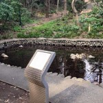 東京経済大学の「新次郎池」