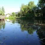 緑多き「姿見の池」