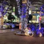 冬の国分寺の夜を彩る光たち