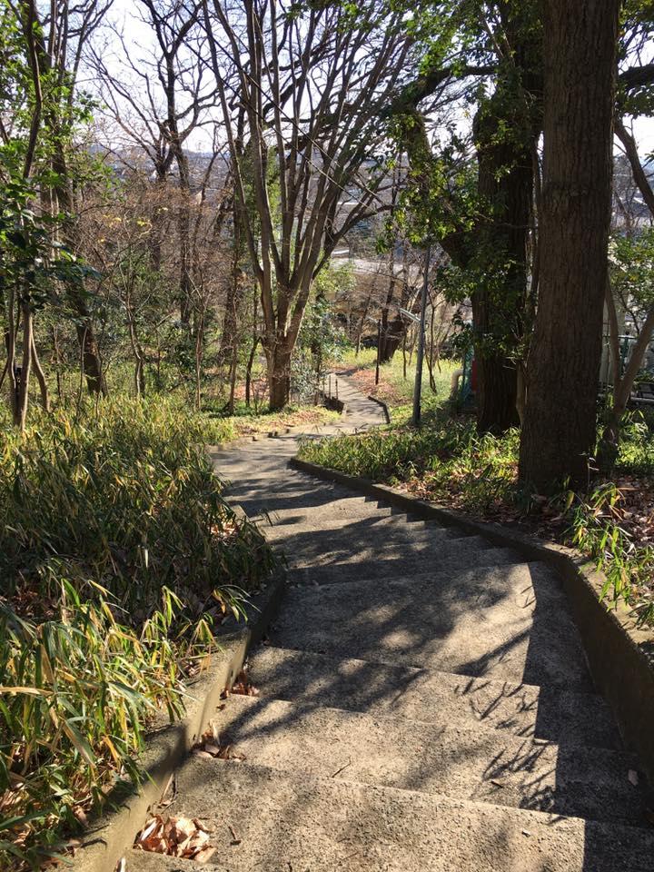 東京経済大学にある散策コース