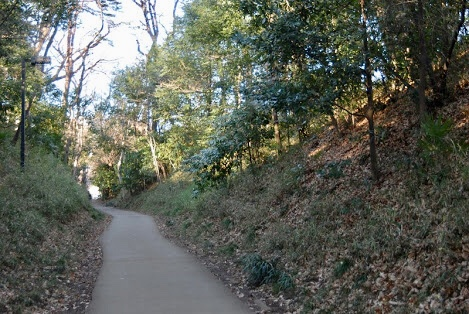 歴史残る自然の道